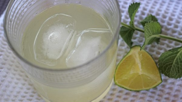 Non-Alcoholic Mint Mojito | Bariatric Recipes | FoodCoach.Me