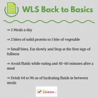 WLS Nutrition Basics | FoodCoach.Me