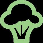 Bariatric Food Coach Icon Broccoli